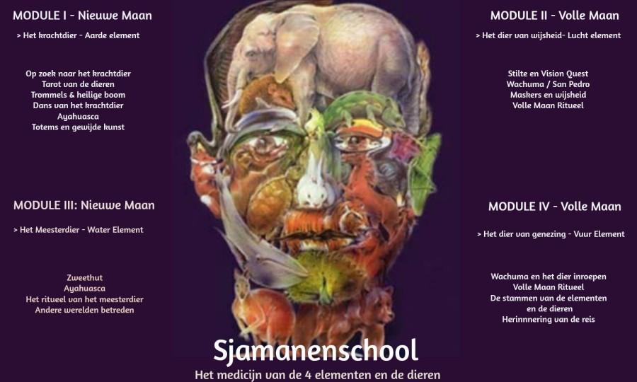 sjamanenschool